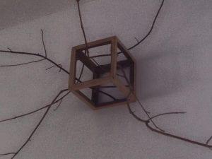 David Nash's Cube