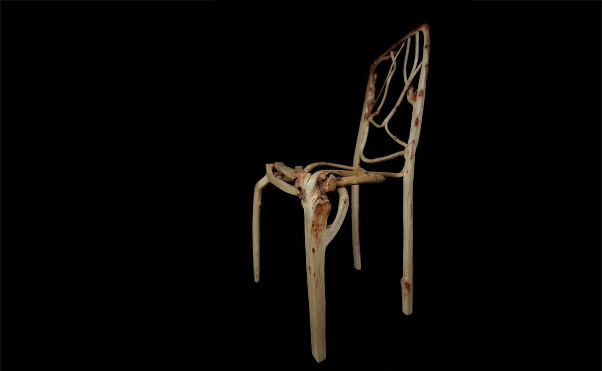 The Prototype Willow Dining Chair